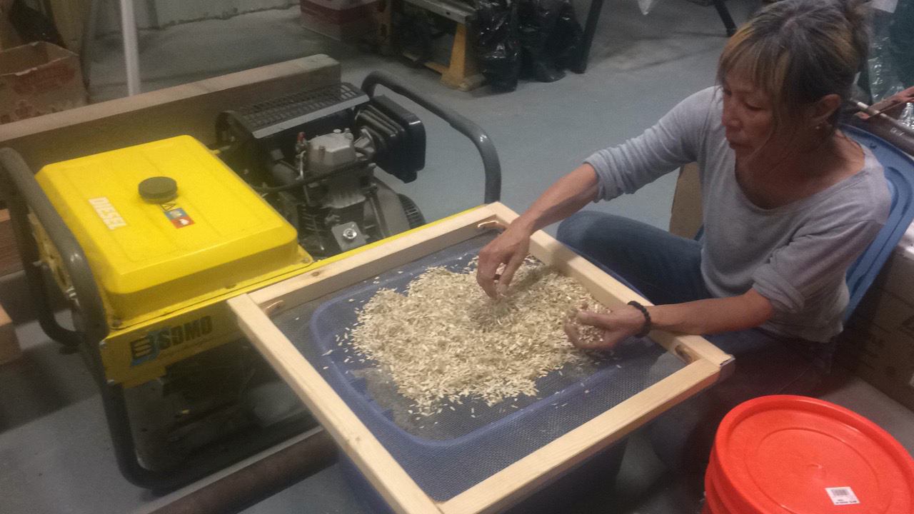 sifting hemp - Miya Mory - NUNA WORKS ALASKA - Arts and Society