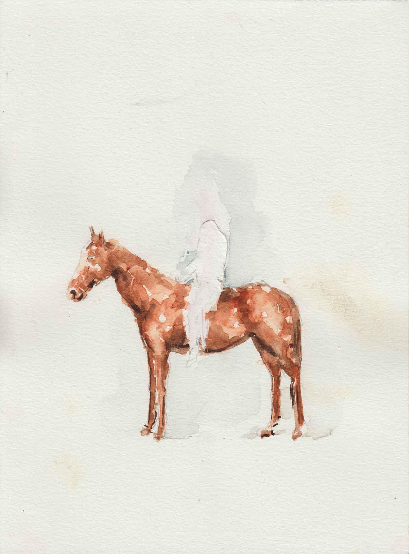 pauline zenk horse arts and society